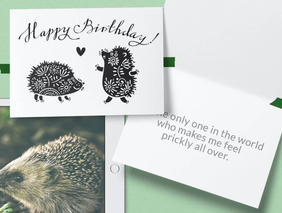 hedgehog hand drawn for husband card