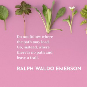 'Do not follow where the path may lead. Go, instead, where there is no path and leave a trail.' Ralph Waldo Emerson