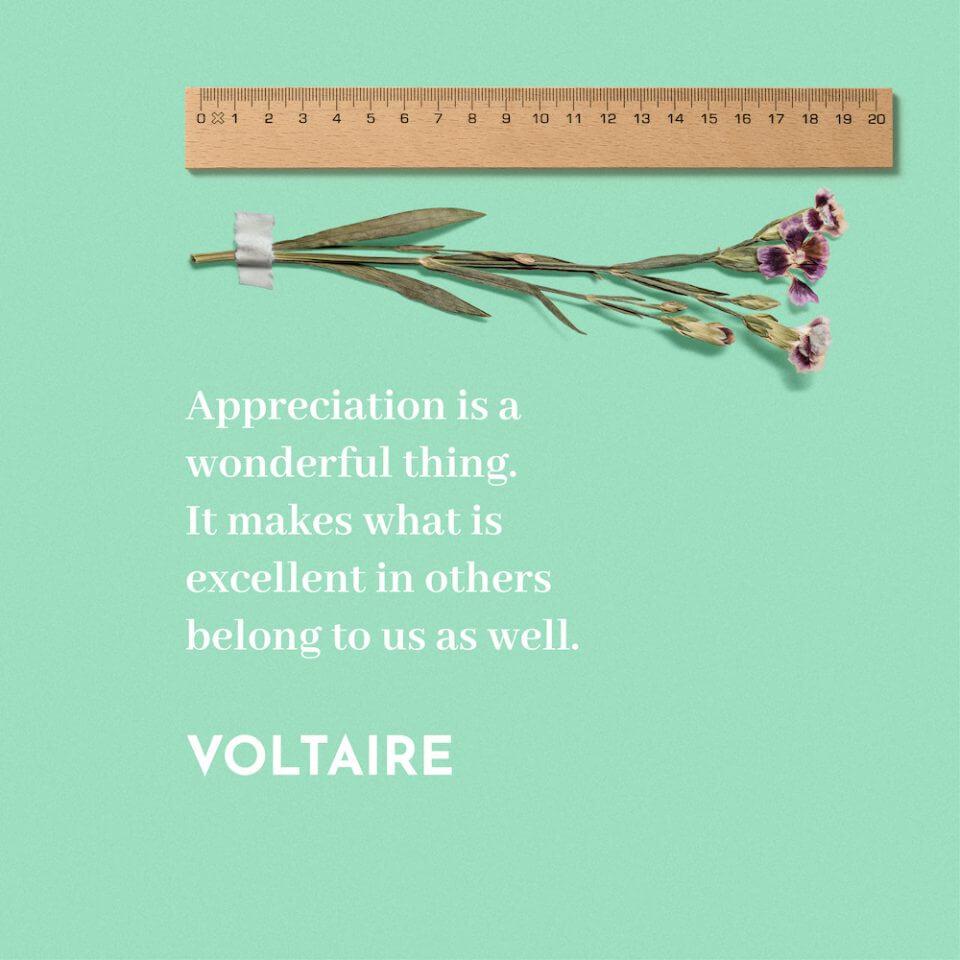 Voltaire quote thank you message appreciation for teachers educators