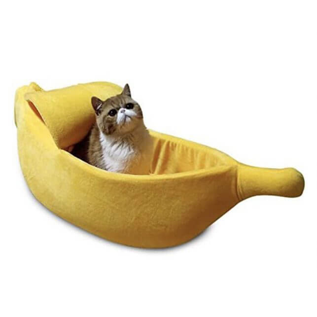 15 Thoughtful Housewarming Gift Ideas unique pet bed